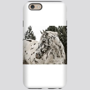 Appaloosa Horse IPhone Cases - CafePress