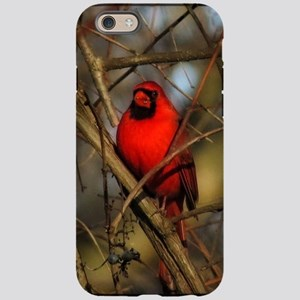 Cardinal iPhone 6/6s Tough Case