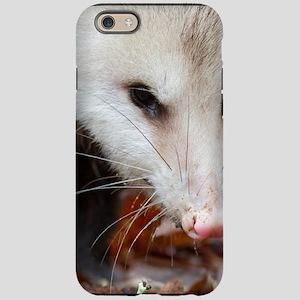 Possum IPhone Cases - CafePress