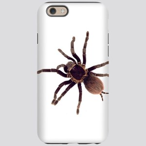 Hairy Brown Tarantula iPhone 6 Tough Case