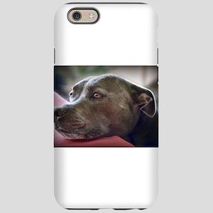 Loving Pitbull Eyes iPhone 6 Tough Case