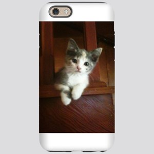 Adorable Calico Kitten iPhone 6 Tough Case