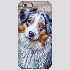 Australian Shepherd iPhone 6 Tough Case