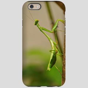 Praying Mantis iPhone 6 Tough Case