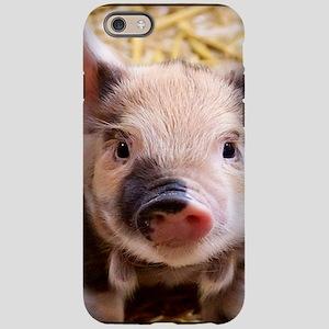 sweet piglet iPhone 6 Tough Case