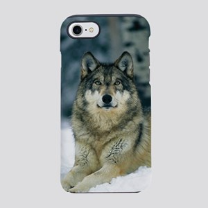 Wolf In The Snow iPhone 8/7 Tough Case