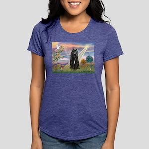 Cloud Angel & Bouvier Womens Tri-blend T-Shirt