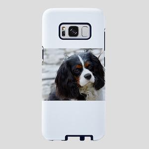 2 cavalier king charles spaniel Samsung Galaxy S8