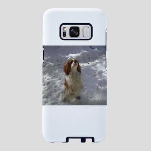 cavalier king charles spaniel in snow ls Samsung G