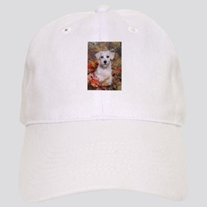 Schnoodle Time Cap