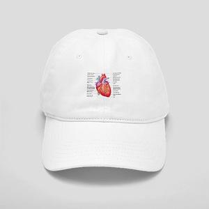 Human Heart Baseball Cap
