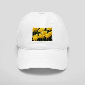 Daffodil flowers in bloom in garden Cap