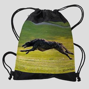 SD 8 Drawstring Bag