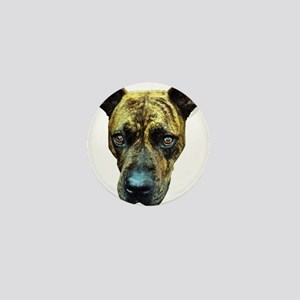 Brindle Pitbull Buttons - CafePress