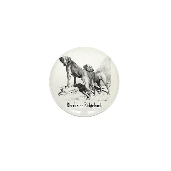 rhodesian ridgeback vintage