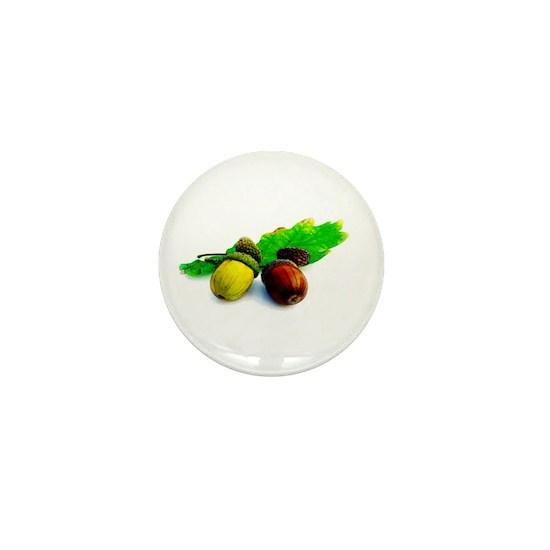 isolated_acorns_4 copy
