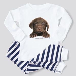 Chocolate Labrador Retriever puppy 9Y270D-050 Todd