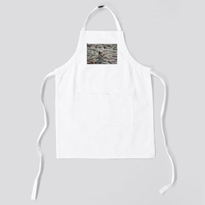 cavalier king charles spaniel on beach Kids Apron