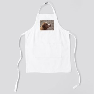 nova scotia duck tolling retriever Kids Apron