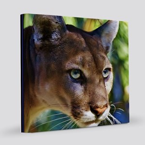 Panther 8x8 Canvas Print