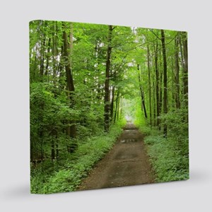 nature trail 8x8 Canvas Print