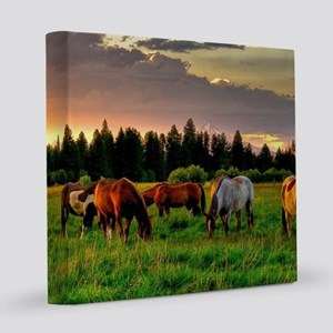 Horses Grazing 8x8 Canvas Print