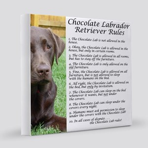 Chocolate Lab Rules 8x8 Canvas Print