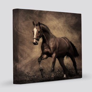 Beautiful Brown Horse 8x8 Canvas Print