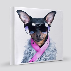 Star Chihuahua8x8 Canvas Print