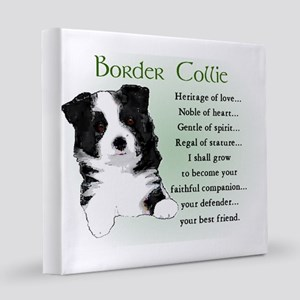 Border Collie Art 8x8 Canvas Print
