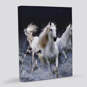 White Horses Running 8x10 Canvas Print