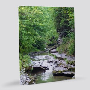 forest river scenery 8x10 Canvas Print