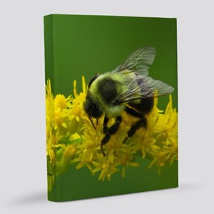 Bumble bee 8x10 Canvas Print