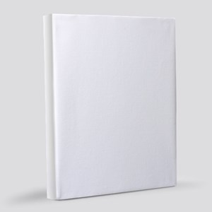 Elf Favorite Color 8x10 Canvas Print