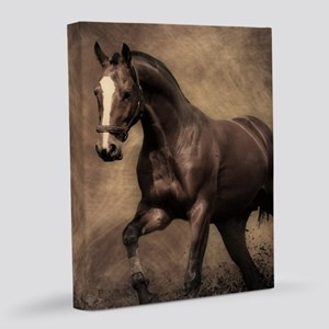 Beautiful Brown Horse 8x10 Canvas Print
