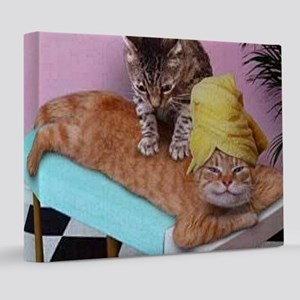 Funny Cat Massage  8x10 Canvas Print