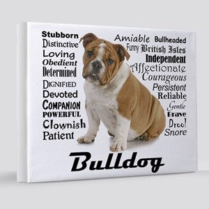 Bulldog Traits 8x10 Canvas Print