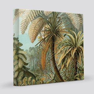 Vintage Tropical Palm 12x12 Canvas Print