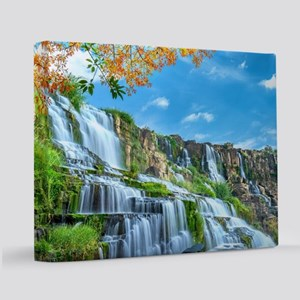 beauty11x14 Canvas Print