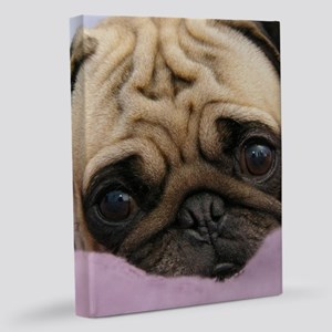 Cute Pug 11x14 Canvas Print