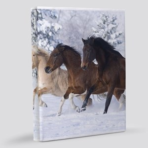 Horses Running In The Snow 11x14 Canvas Print