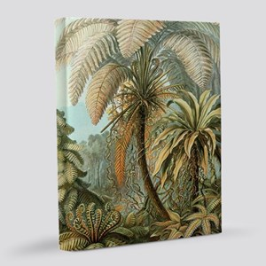 Vintage Tropical Palm 16x20 Canvas Print