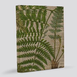 botanical foliage fern leaves 16x20 Canvas Print