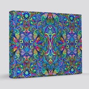 Colorful Abstract Psychedelic Swirls 16x20 Canvas
