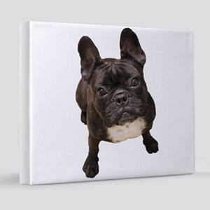 Classic French Bulldog 20x24 Canvas Print