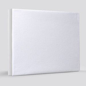 Elf Code Rules 20x24 Canvas Print