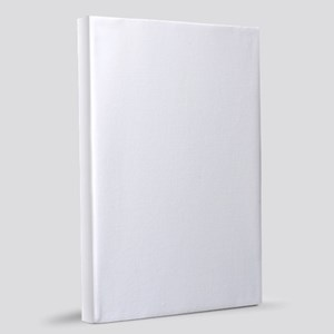 Elf Favorite Color 20x30 Canvas Print
