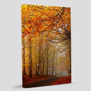 Road At Autumn 20x30 Canvas Print