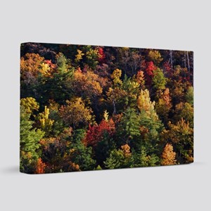 A Slice of Fall 20x30 Canvas Print