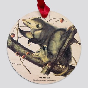 Opossum1.png Maple Round Ornament